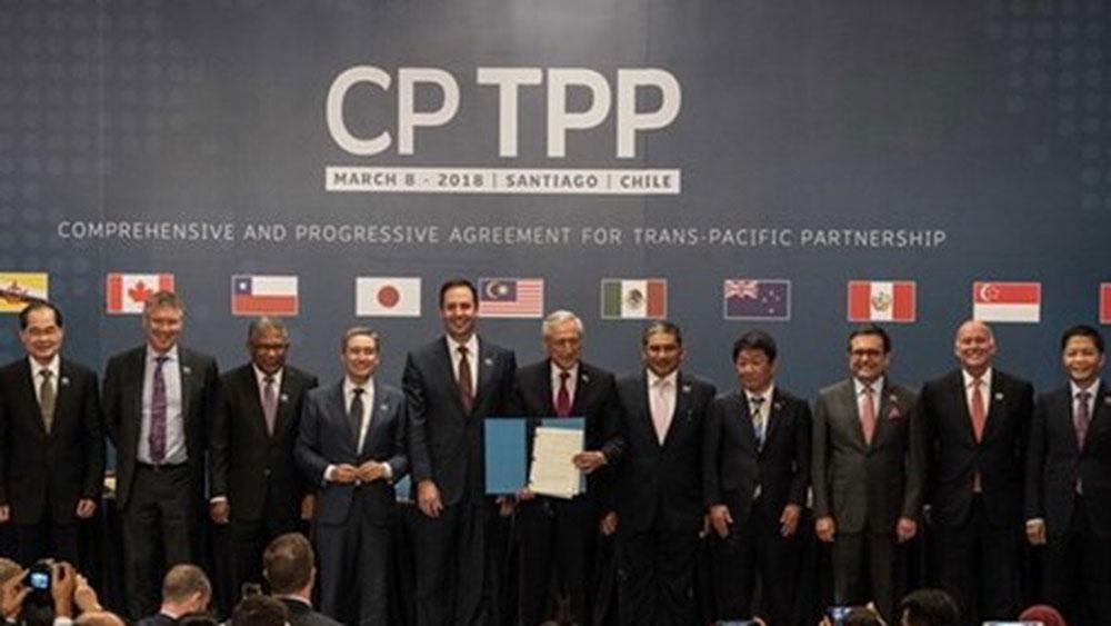 Nhật Bản, Chile nhất trí hợp tác thực thi CPTPP